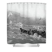 Ziegler Polar Expedition Shower Curtain