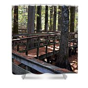 Zig Zag Thru The Cypress Trees Shower Curtain