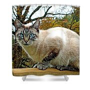 Zing The Cat In The Fall Shower Curtain