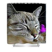 Zing The Cat Sleeping Shower Curtain