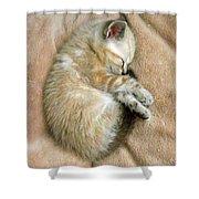 Zing The Kitten Shower Curtain