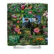 Zinnias Collage Rectangle Shower Curtain