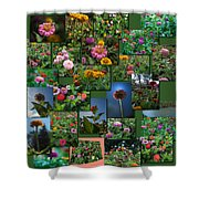Zinnias Collage Square Shower Curtain