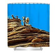 Zion Bighorn Sheep Shower Curtain