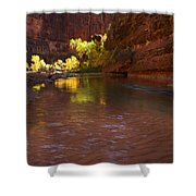 Zion Canyon Of The Virgin River Shower Curtain
