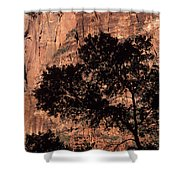 Zion National Park Canyon Walls With Silhouetted Trees In Front  Shower Curtain