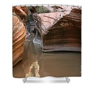 Zion Puddle Shower Curtain