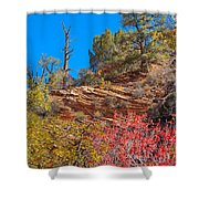 Zion Reds Shower Curtain