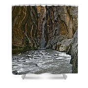 Zions 002 Shower Curtain