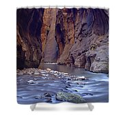 Zions 015 Shower Curtain