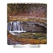 Zions 020 Shower Curtain