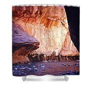 Zions 047 Shower Curtain