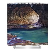 Zions 26 Shower Curtain