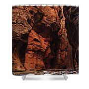 Zions 30 Shower Curtain