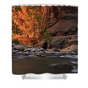 Zions 9 Shower Curtain