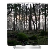 Zombie Trees Shower Curtain