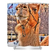And To The Republic For Which It Stands    Shower Curtain