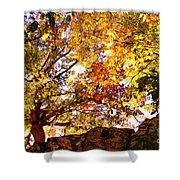 Autumn High Shower Curtain