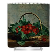 Basket Of Strawberries Shower Curtain