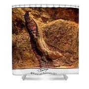 Bronze Lizard Shower Curtain