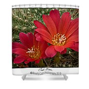 Cacti Bloom Shower Curtain