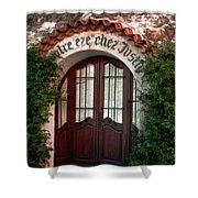 Doorway Eze  Shower Curtain