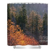Great Smoky Mountains Morning Shower Curtain