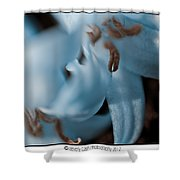 Icy Bluebells Shower Curtain