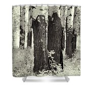 Muleshoe Trees Infra Red Shower Curtain
