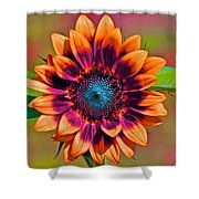Orange Flowers In Their Buttonholes Shower Curtain