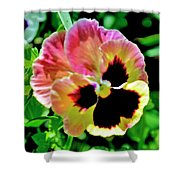 Pink And Yellow Pansy Shower Curtain