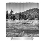 Prairie In South Lake Tahoe Shower Curtain