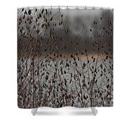Rattle Rattle Shower Curtain