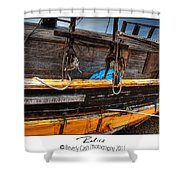 Relics - Edward Birkbeck Shower Curtain