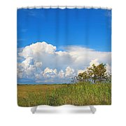 Shark River Slough - 1 Shower Curtain