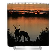 South African Sunset Shower Curtain
