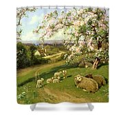 Spring - One Of A Set Of The Four Seasons  Shower Curtain