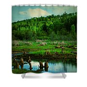 St Anne Shower Curtain