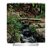 Stream In Tall Pines Shower Curtain