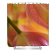 The Pair Shower Curtain