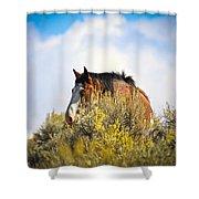 Wild Horse In The Sage Shower Curtain