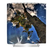 001 Reaching For The Sky Shower Curtain