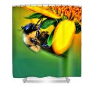 001 Sleeping Bee Shower Curtain