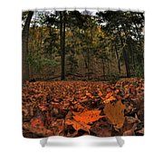0013 Letchworth State Park Series Shower Curtain