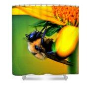 002 Sleeping Bee Series Shower Curtain