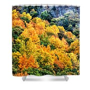 0027 Letchworth State Park Series   Shower Curtain