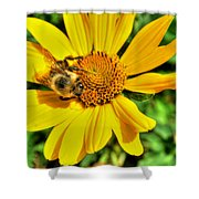003 Busy Bee Series Shower Curtain