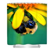003 Sleeping Bee Series Shower Curtain