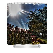 003 Summer Sunrise Series Shower Curtain