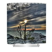 004 In Harmony With Nature Series Shower Curtain